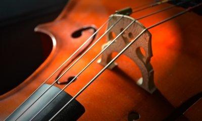 Nahaufnahme eines Cellos