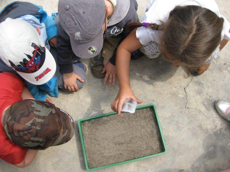 Kinder forschen in der Natur
