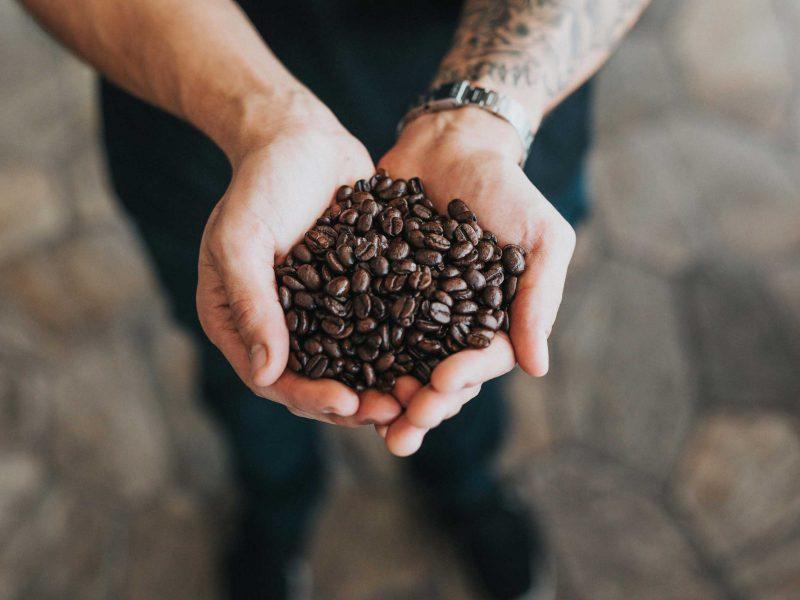 Hände gefüllt mit Kaffeebohnen