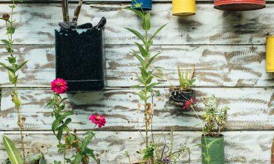 recycelte bunte Blumentöpfe hängen an einer Wand