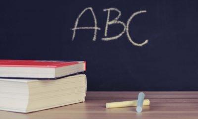 Bücher und Kreide liegen vor einer Tafel