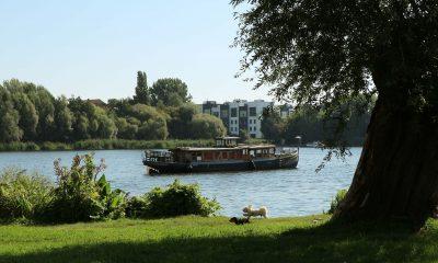 Ufer der Spree mit Blick auf ein fahrendes Schiff