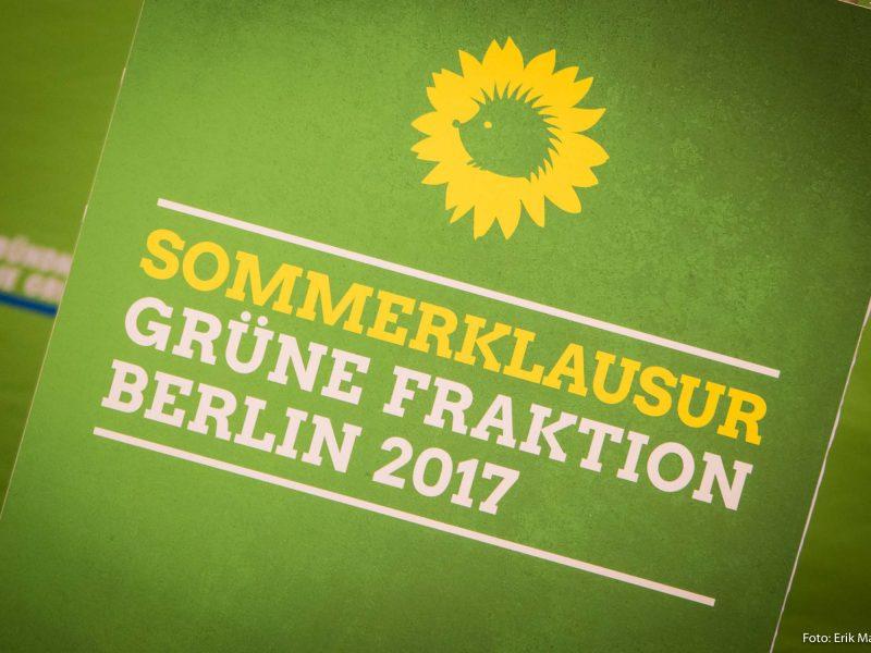 Im Bild ist das Logo der Grünen Sommerklausur zu sehen.
