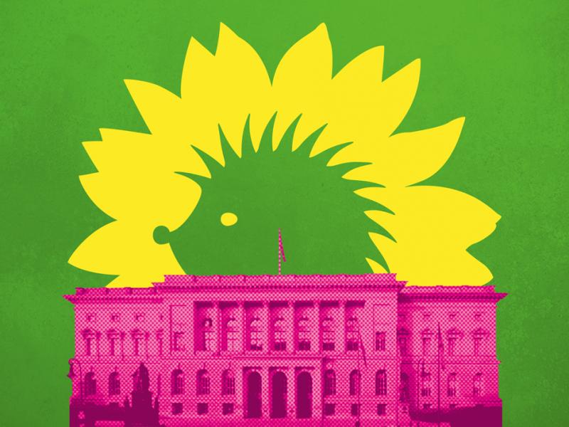 Igelblume hinter dem Berliner Abgeordnetenhaus