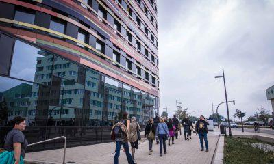 Auf dem Bild sind verschiedene Leute zu sehen, die zur Umweltbehörde in Hamburg laufen.