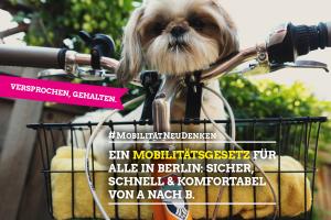 """Sharepic """"Mobilität für alle"""""""