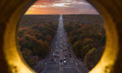 Es ist der Berliner Tiergarten von oben zu sehen