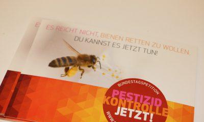 Es ist ein Flyer mit einer Biene zu sehen