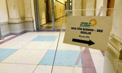 """Es ist eine Ausschilderung zu sehen, welche zu der Veranstaltung """"Bee Berlin – Wir für Bienen"""" führte"""