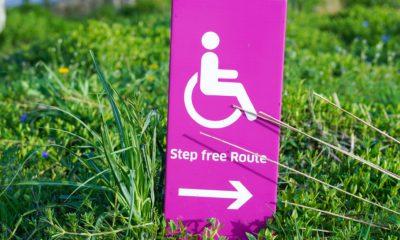 Es ist ein pinkfarbenes Kärtchen mit einem Rollstuhlsymbol auf grünem Rasen zu sehen