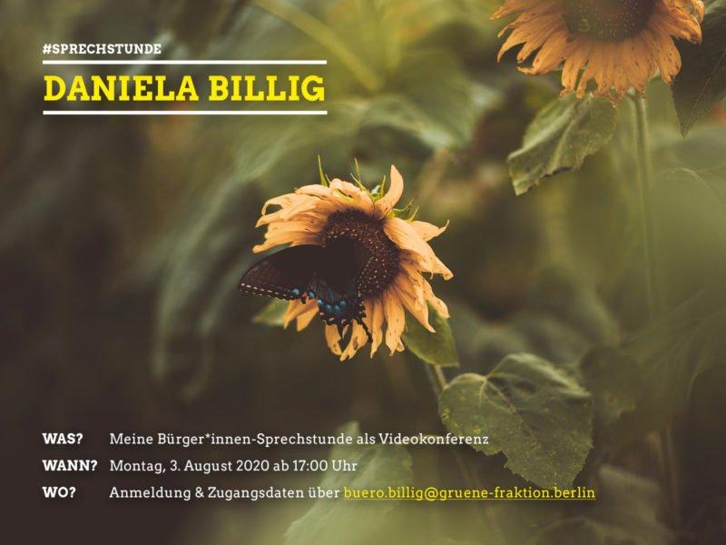 Sommersprechstunde Daniela Billig 3.8.2020