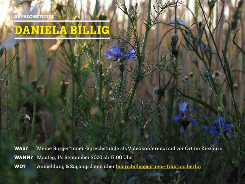 Bürger*innensprechstunde Daniela Billig 14.9.2020