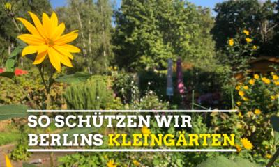 Kleingärten-schützen